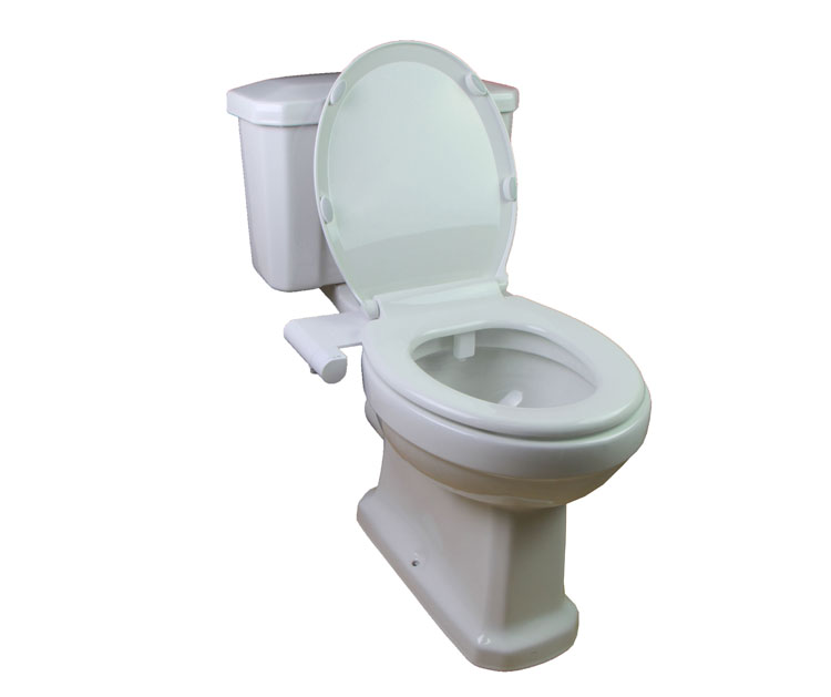 Toilet Bidet with Cold Bidet with Nozzle Self-cleaning